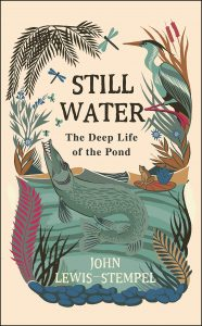 Best Books to read for Spring 2019 - Still Water