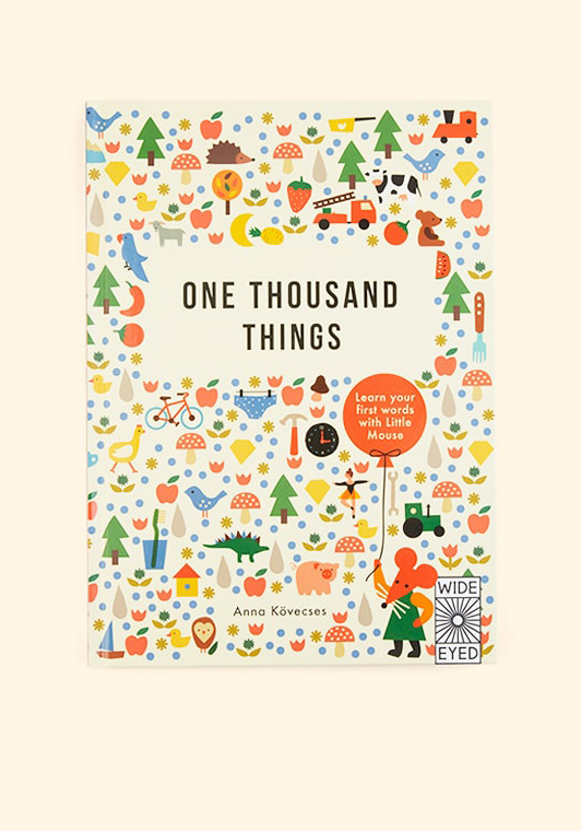 A cover of the book, One Thousand Things. Featuring the text on a background of smaller images of many different items.