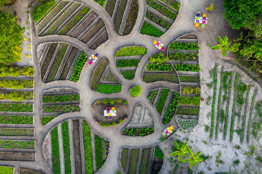 An aerial photograph of the sustainable kitchen garden at Soneva Jani.