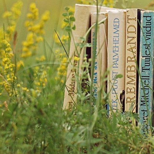 A photograph of some vintage books in a wildflower field to show the connection between books and nature.