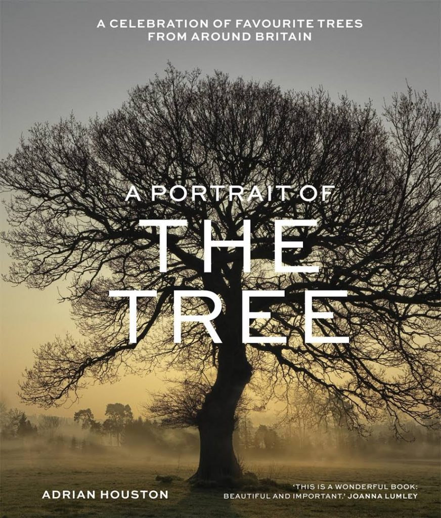 The cover of the book 'A Portrait of The Tree' by Adrian Houston featuring white text over a background image of a trees silhouette at sunrise.