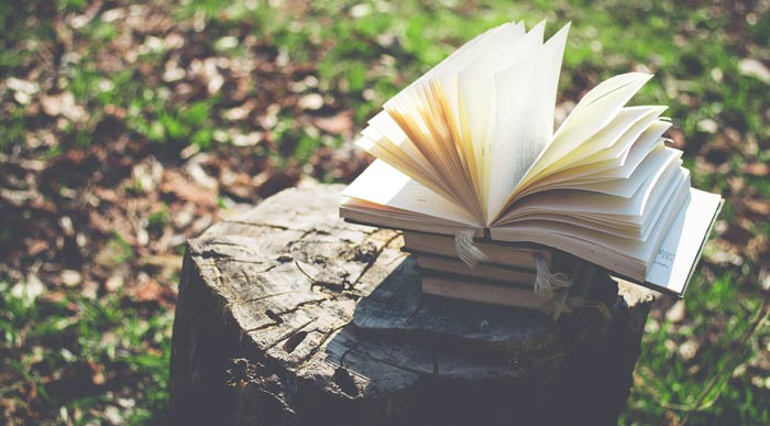 A photograph of an open book upon a stack of books resting on a tree stump
